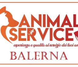 Animal Service – Daphnia SA