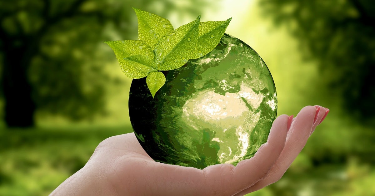 Greenwashing: marketing di finta immagine etica ambientale.